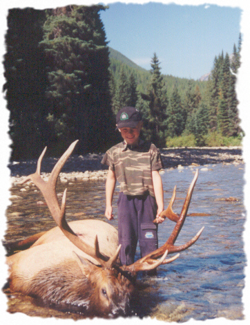 Moose Hunting In Canada Top Outfitters From All Regions Of
